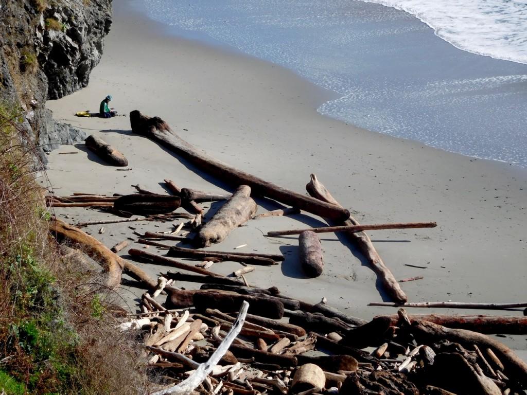 Portuguese Beach scale