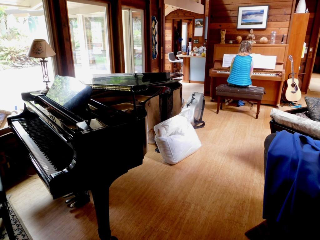 both pianos